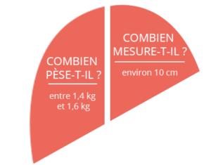 infos sur le foie : poids et taille